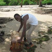 Kenya, Funzi, Livraison de vivres au village
