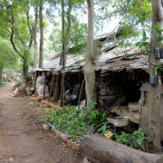 Kenya, Mombasa, Akamba handicraft village à Changamwe