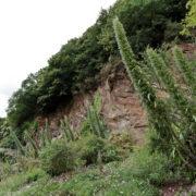 La vallée de Stangalar
