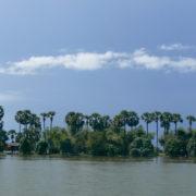 Paysages à environ 50km de Phnom Penh