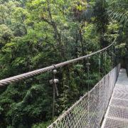 Ponts suspendus d'Arenal