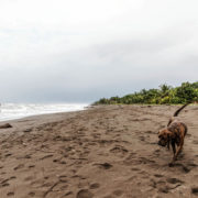 Plage à Tortuguero, la mer des Caraibes sous les nuages