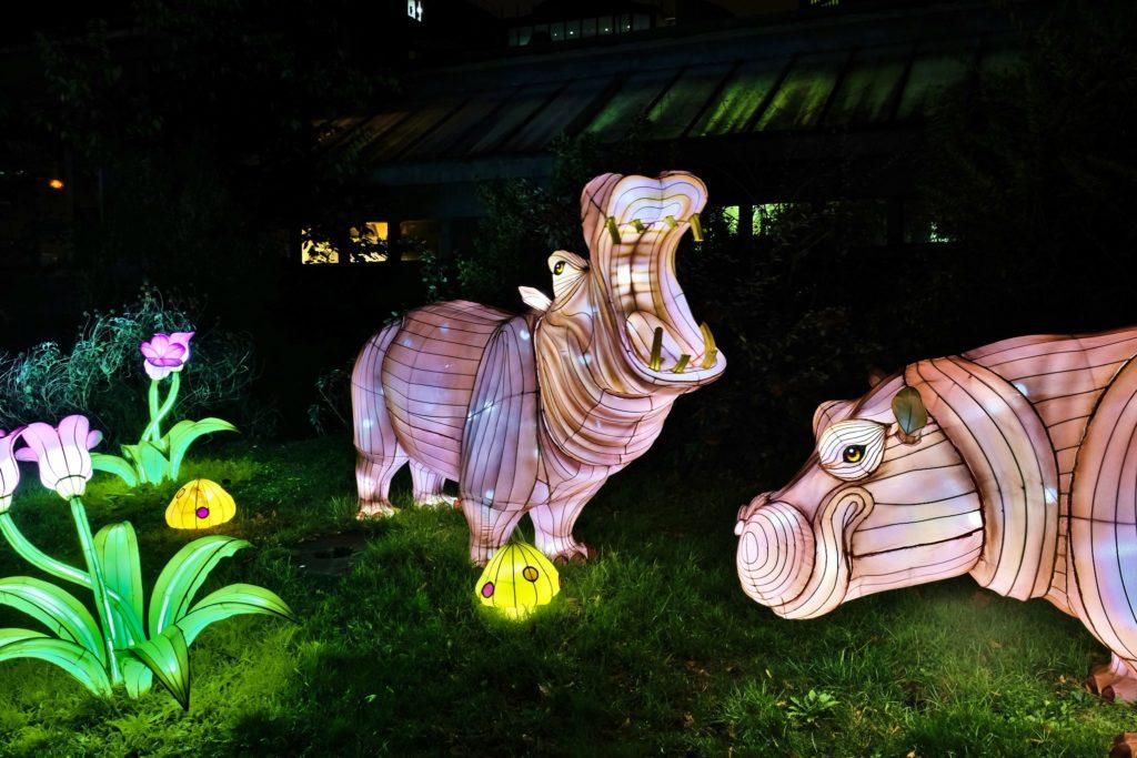 Illumination-JardinDesPlantes-0035