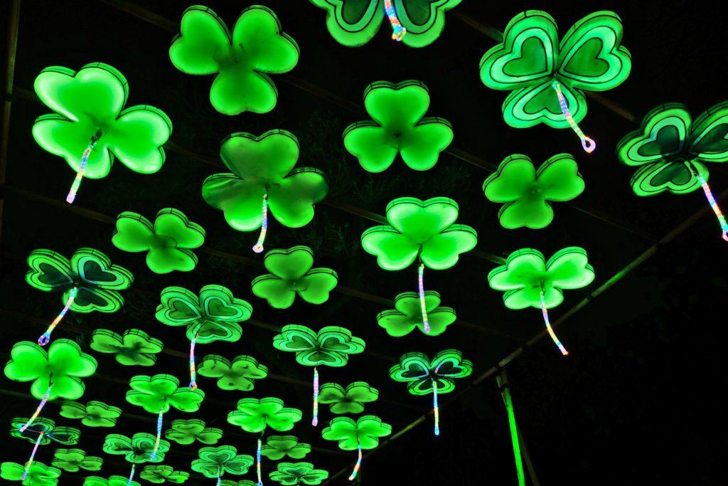 Illumination-JardinDesPlantes-0049