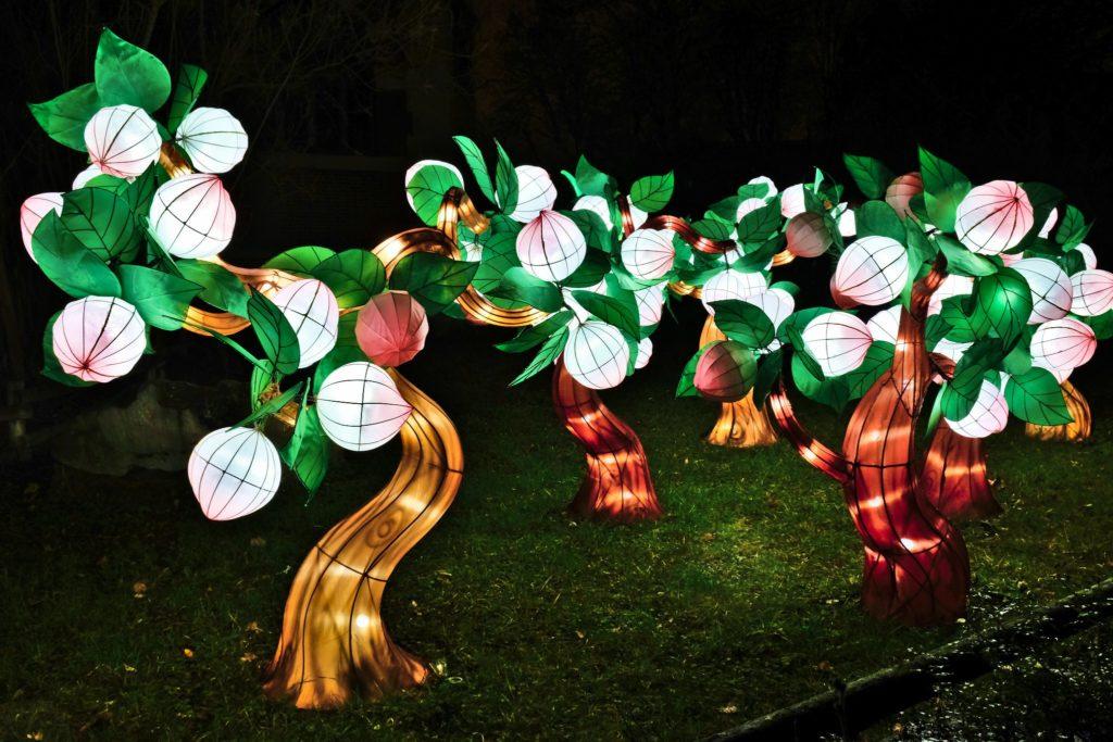 Illumination-JardinDesPlantes-0062