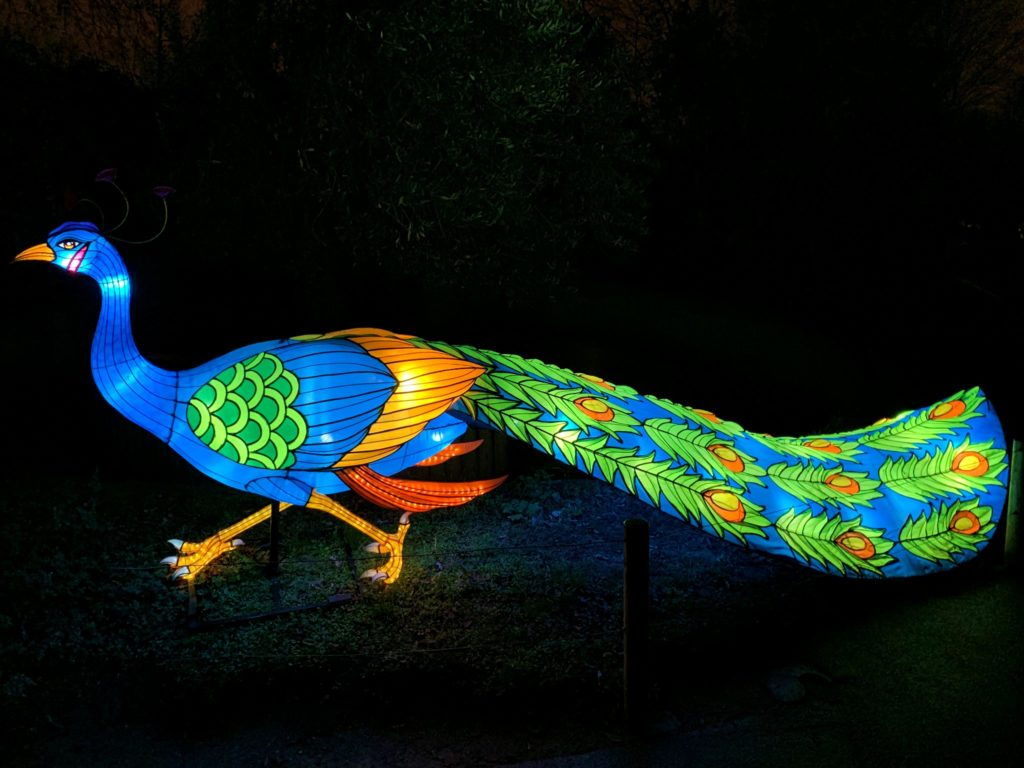 Illumination-JardinDesPlantes-Pascal-0002
